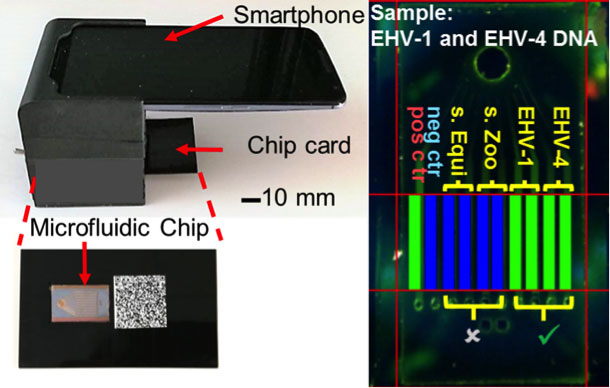 lab-on-a-chip diagnosing illnesses in the field